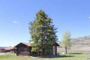 6 historic colorado cabin 02 216